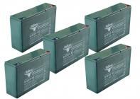 Комплект тяговых гелевых аккумуляторов RuTrike 6-EVF-32 (60V32A/H C3)