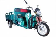 Rutrike Алтай 2000 60V1500W (Светло-зеленый-1959)
