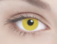 SOLID YELLOW Сплошной желтый