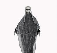 Скелет в чёрном балохоне